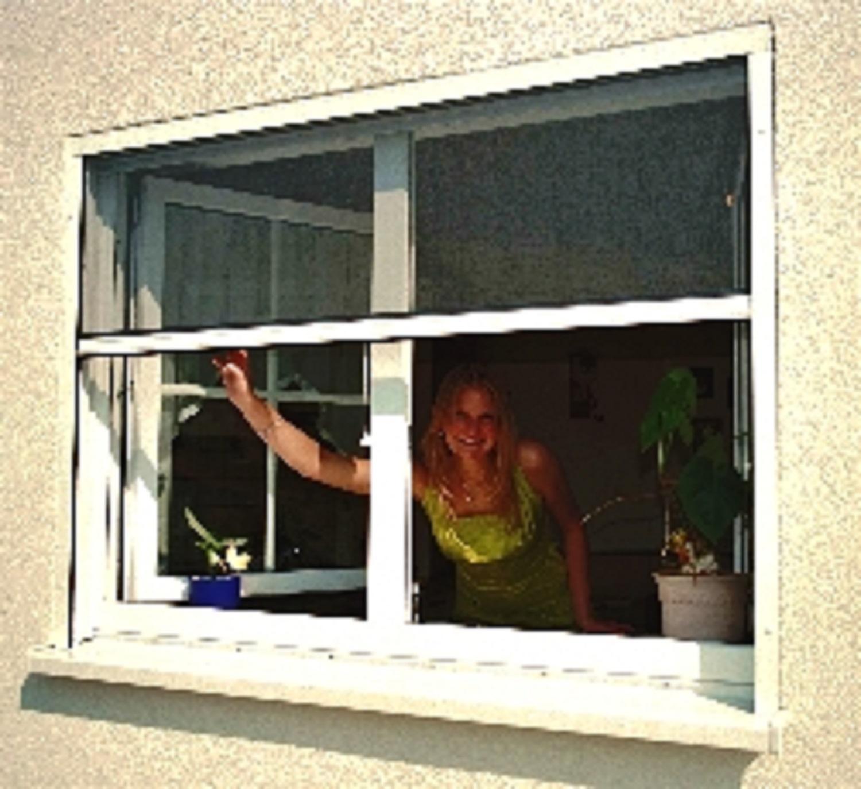 Insektenschutz und Pollengitter für Fenster von KoriTec