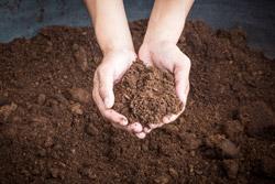 Gartenerde Kompost Mutterboden