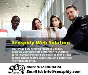 seospidy- seo services company in delhi