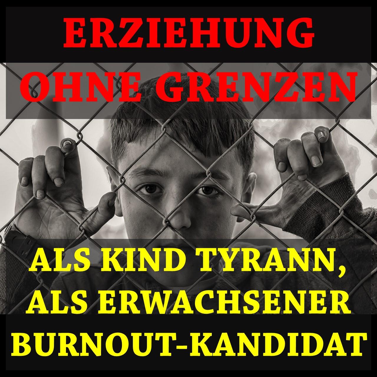 Erziehung ohne Grenzen: Als Kind Tyrann, als Erwachsener Burnout-Kandidat (Dantse Dantse)