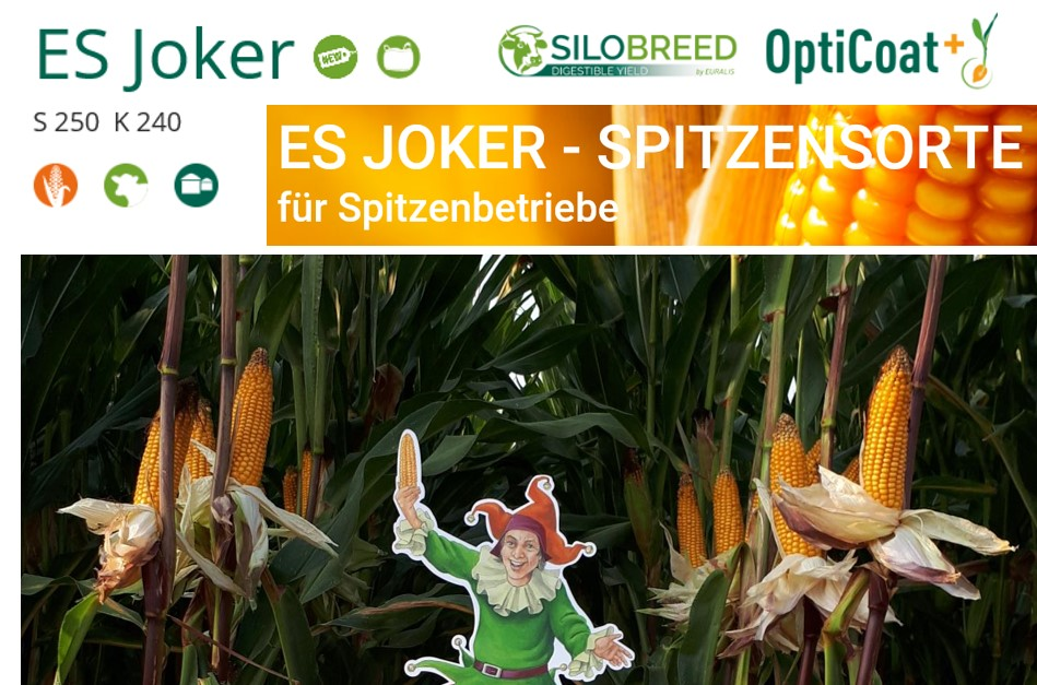 EURALIS ES Joker im EURALIS BigBag – jetzt bestellen!