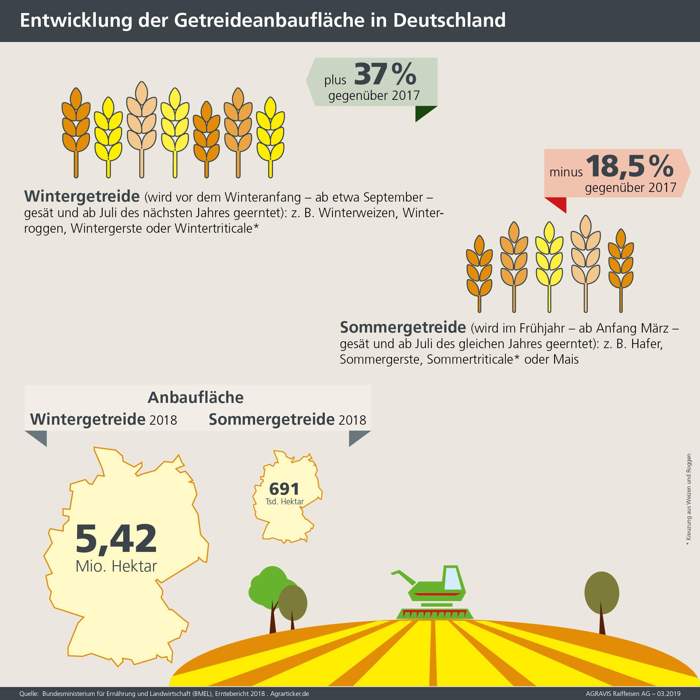 Infografik der AGRAVIS Raiffeisen AG zum Getreideanbau