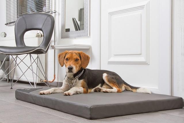 Orthopädische Hundematten aus der Hundebettenmanufaktur