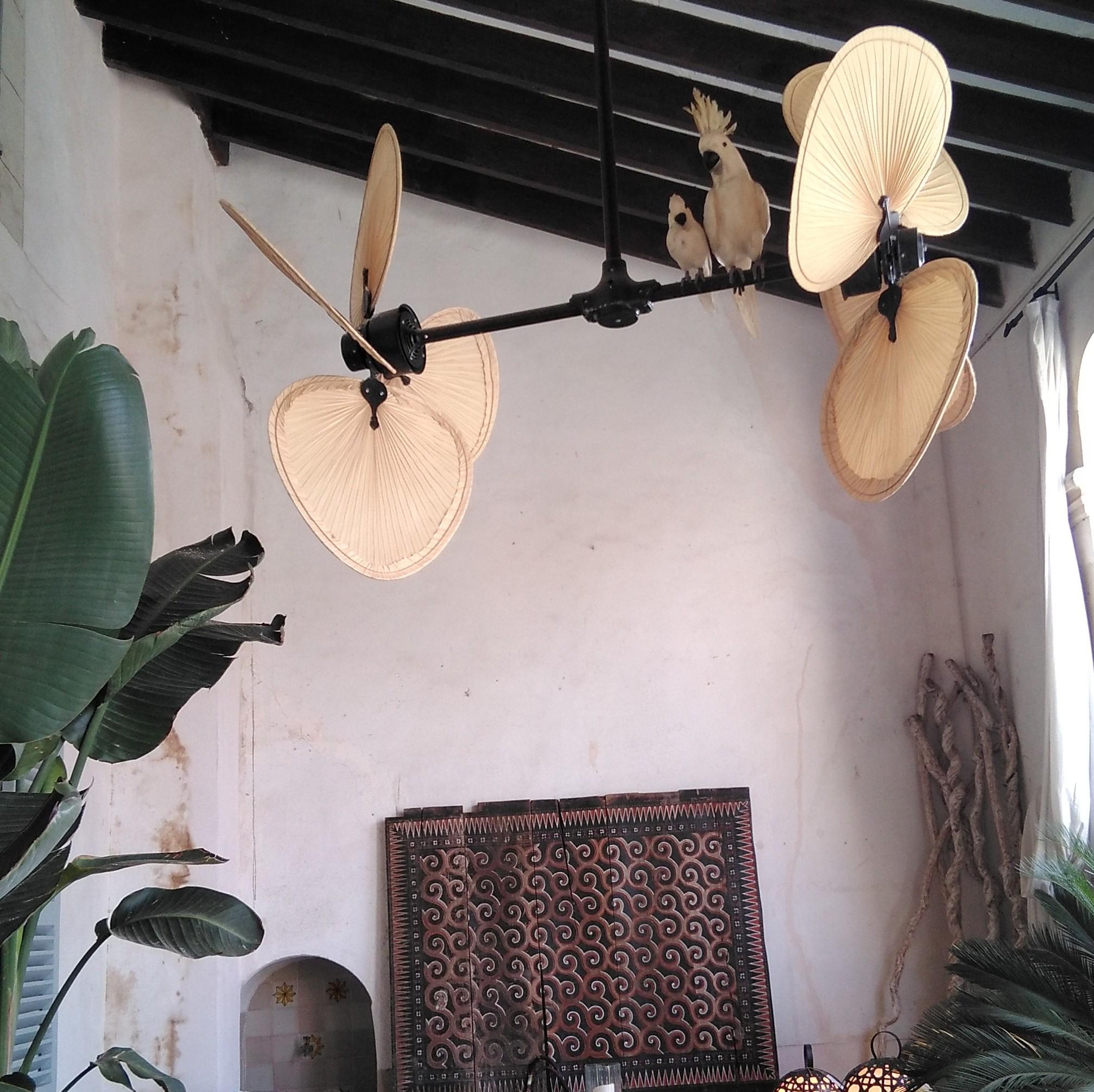 Design Ventilatoren in den Häusern und Villen der Stars
