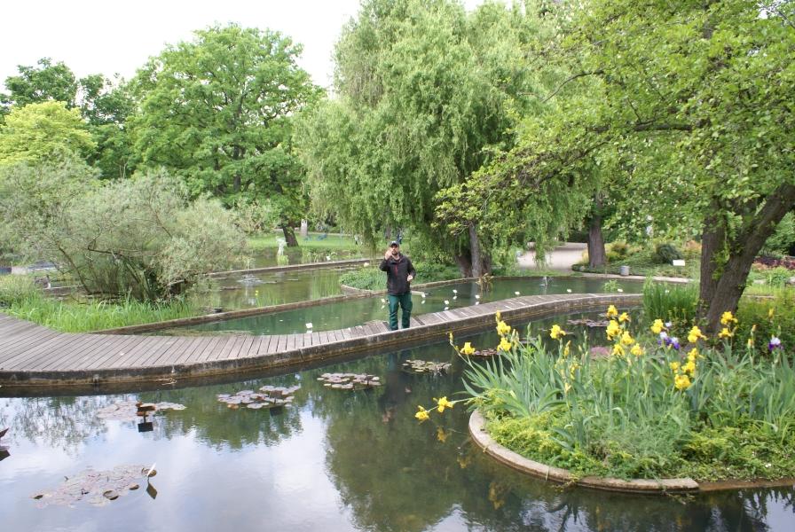 EMIKO steigert Umsatz bei Produkten zur Gewässersanierung um 37 %