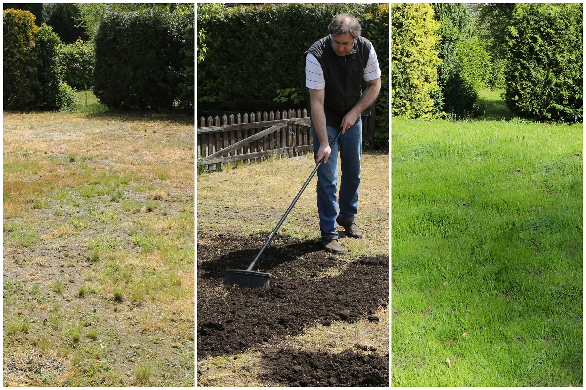 Geheim-Tipp für den hitzegeschädigten Rasen