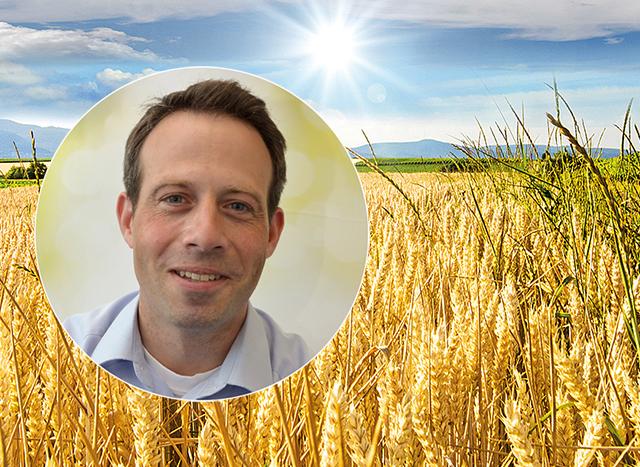AGRAVIS-Marktanalysen: Chilla checkt!