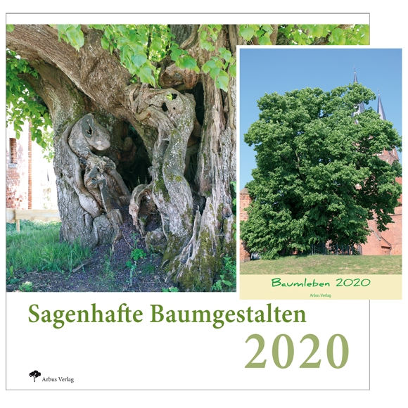 Baumkalender 2020