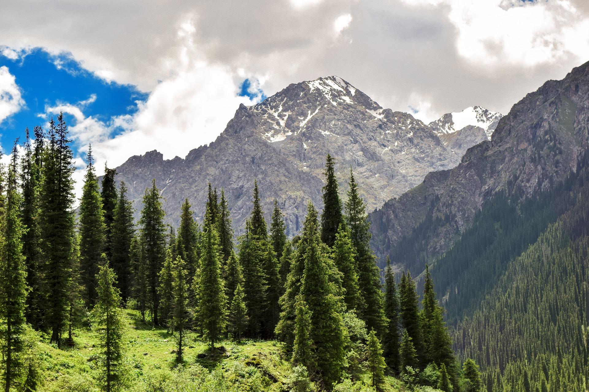 Alle Wege in Zentralasien führen über Kasachstan