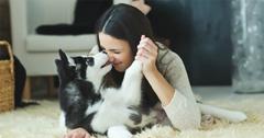 Kann sich der Hund beim Menschen anstecken?