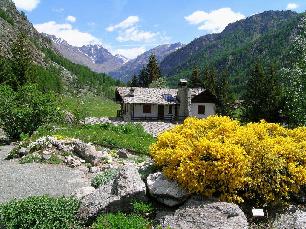 VALLE-DAOSTA-Giardino-botanico-Paradisia-Cogne__Archives-Tourisme-Vallée-dAoste_1 Heilsame Schönheiten - das Aostatal in voller Blütenpracht