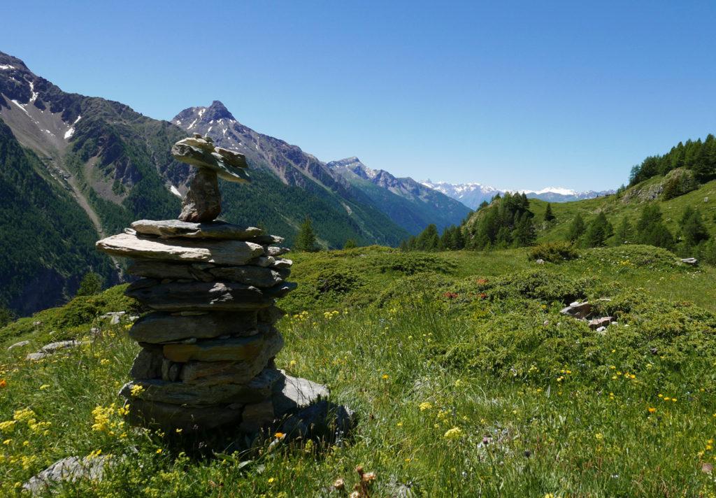 Valle-d´Aoste-_Wilde-Wiese_Foto-Anke-Sademann_web-1024x712 Heilsame Schönheiten - das Aostatal in voller Blütenpracht